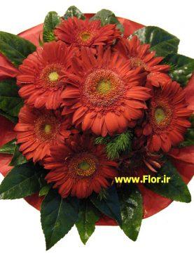 Bouquet 423